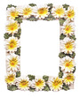 Frame with flowers on white background with clipping path