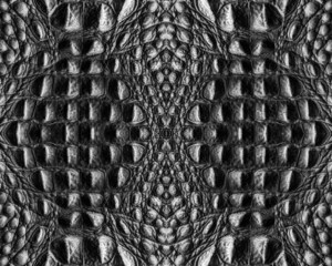 black crocodile skin texture closeup