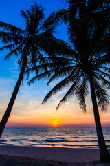 Beautiful tropical sunset with palm trees. Tropical beach.  palm