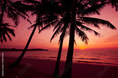 Foto op Canvas Baksteen palm trees silhouette on sunset tropical beach. Tropical sunset