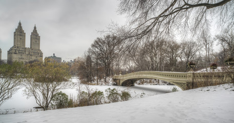 Central Park, New York City during snow storm