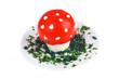 Mushroom shaped egg and tomato