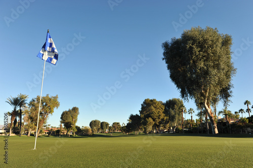 Checkered golf flag on a green