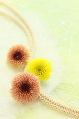 菊の花と和紙