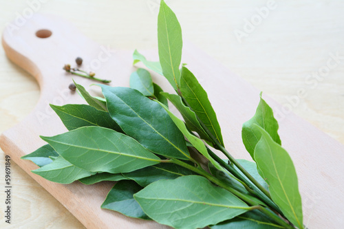 dry leaves laurel tree, seasoning