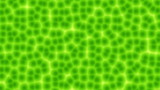 Plant cells computer generated seamless loop animation