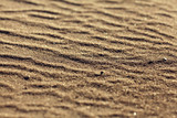 desert sand texture background