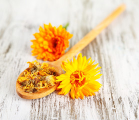 Fresh and dried calendula flowers on wooden background