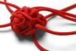 Leinwanddruck Bild - Knot Tangle