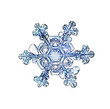 natural crystal snowflake macro - 59712431