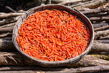 Chili dried in the bamboo basket