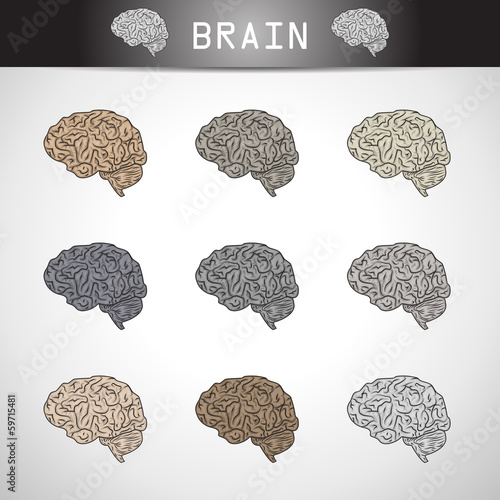 Brain Icons Set - Isolated On Gray Background
