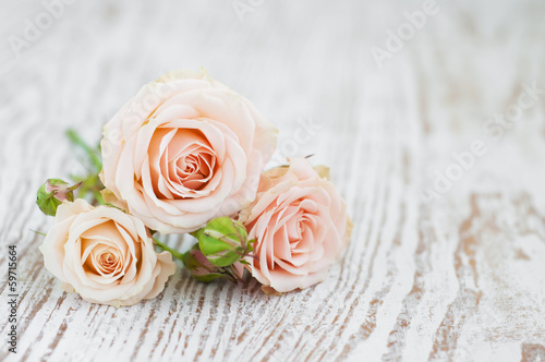 Tuinposter Roses Light Pink roses