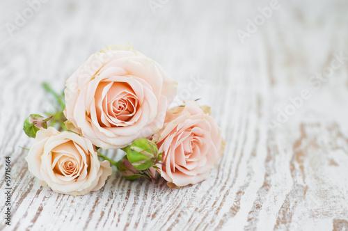 Foto op Canvas Roses Light Pink roses