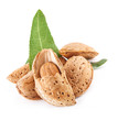 Group of almond nuts with leaves. Isolated on white