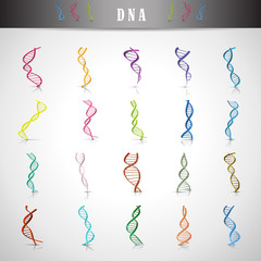 Dna Icons Set - Isolated On Gray Background - Vector