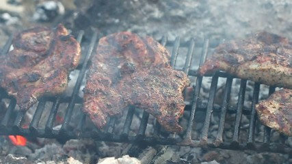 Meat on the barbecue with grillmarks