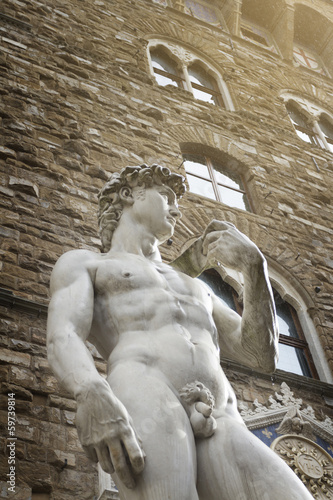 The statue of David from Florence, Italy