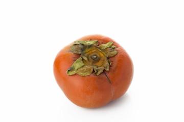 柿 白背景