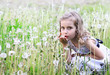 Girl blowing dandelion on a meadow