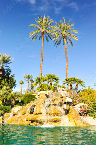Pool of water with row of palm trees
