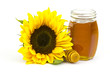 honey and sunflowers on white background