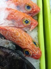 Salmon fresco en venta pescaderia