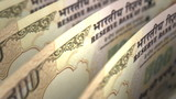 Indian Rupee Close-up