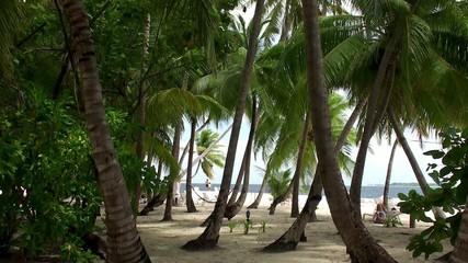 View of the Maldives beach.