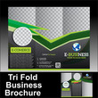 Vector Tri Fold Business Brochure