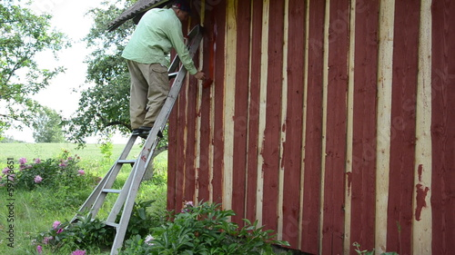 housepainter man on ladder paint wooden garden house wall