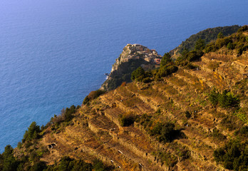 Sunset in Cinque Terre, Italy - terraced vineyard landscape look