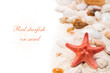 Red starfish on sand. Background