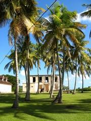 Habitation Murat, Guadeloupe