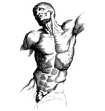 Male Torso Engraving - 59786052