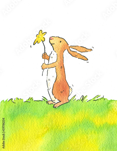 canvas print picture ostern,hase
