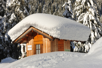 Dolomiti, Trentino  Alto Adige Italia - Val Veneggia