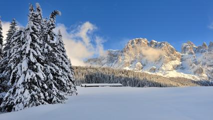 Dolomiti, Pale di San Martino - Val Venggia, Italy