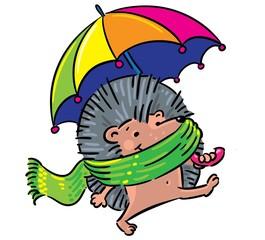 Ёжик гуляет под дождем