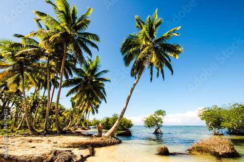 Caribbean: Lonely beach :)