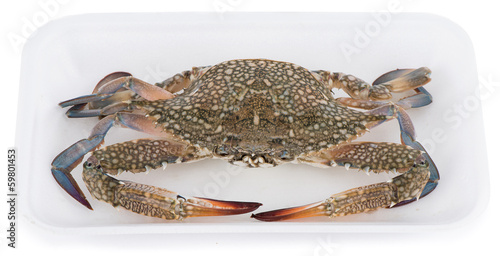 Blue crab in market package isolated on white background