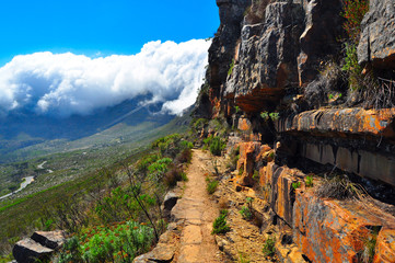 Table mountain South Africa hike trail