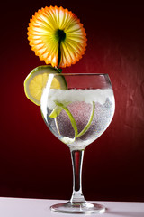 Gin tonic with lemon