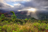 Waimea Canyon in Kauai, Hawaii Islands.
