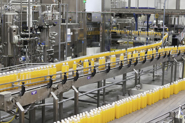 Packed bottles moving on conveyor belt in bottling industry
