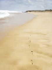 Footprints on sand at beach