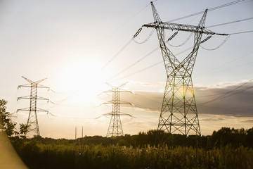 Electric power lines during summer