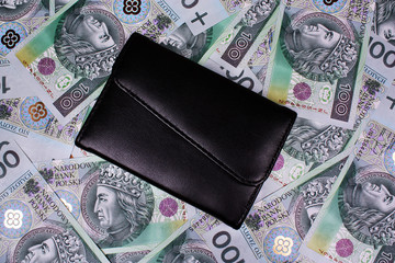 Money polish and wallet