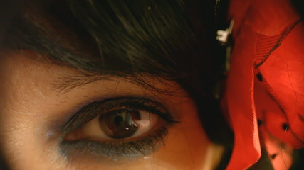 Eye macro woman look in camera