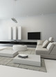Black and white living room interior